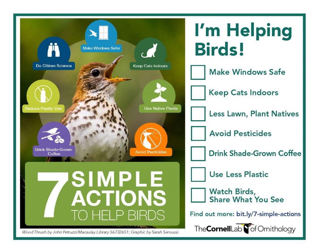 Helping Birds Checklist
