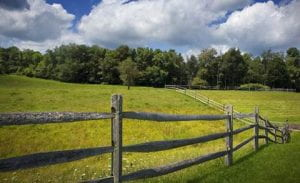 Photo of a green field with a brown rail fence and green trees in the background