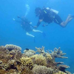 thumb_aus_students_scuba_diving_at_great_barrier_reef_3_