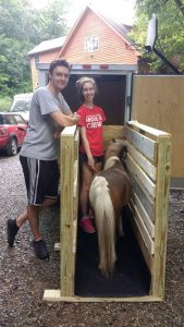 We bought/built a horse trailer! Nemo is practicing walking in and out of his special mini-sized stall