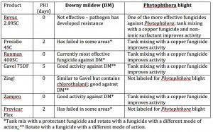 DM Phytoph 2Jul2015