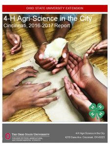 Link to Annual Report