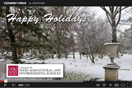 holiday greetings video