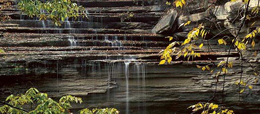 image of clifty falls state park