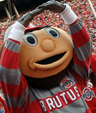 image of brutus buckeye