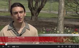 henry peller video