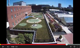 green roof time lapse