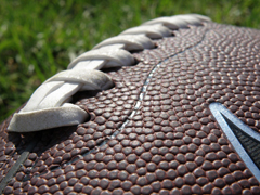 football closeup