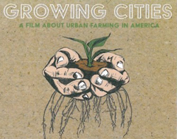 growing cities image