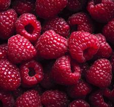 picture of raspberries.jp