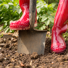 New active soil organic matter test