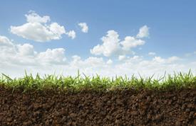 Spent foundry sand as a safe soil amendment