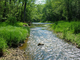 EPN program on Big Darby Creek for GB