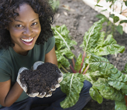 Test your garden soil