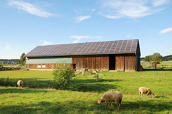 Picture of barn with solar panels