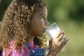 Organic dairy tour
