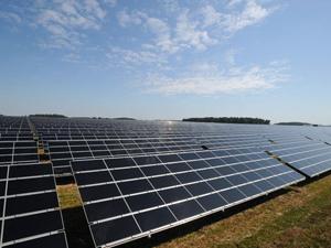 PSEG solar farm