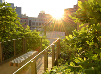 Photo of High Line Park in New York 2