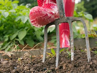Photo of gardener at work 2