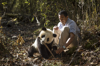 Photo of M Sanjayan and panda 3