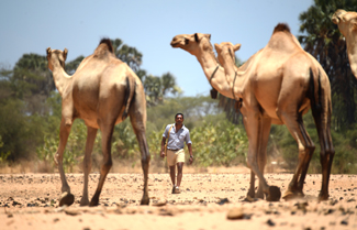 Photo of M. Sanjayan and camels by Ami Vitale