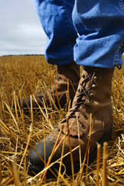 Photo of farmers boots in field