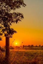 Photo of sun over farm