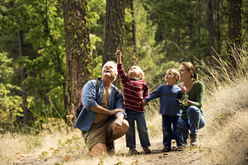 Image of people exploring a woods 2