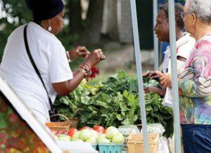 Picture of Gateway 105 farmers market