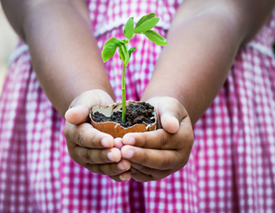 Image of girl holding new green plant_4