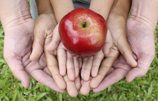 Adult hands holding kid hands with red apple on top