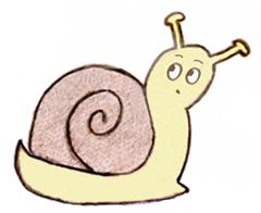 snail-240