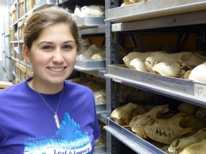 Emily and coyote skulls