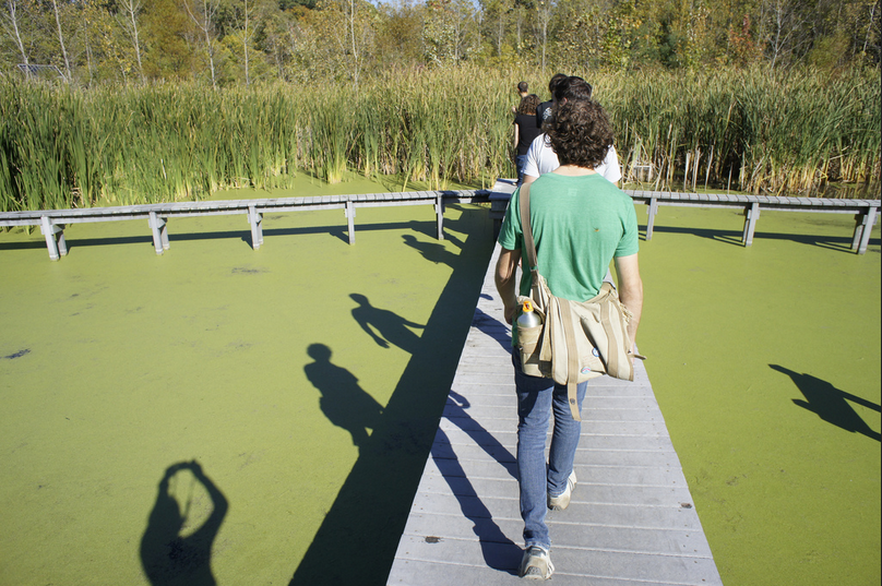 Olentangy River Wetland Research Park