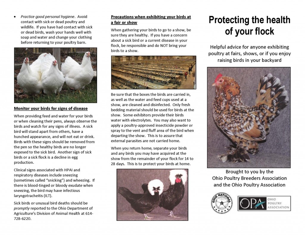 Protecting the health of your flock. from OPBA 2016Jan pic_Page_2