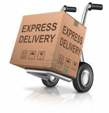 package delivery3