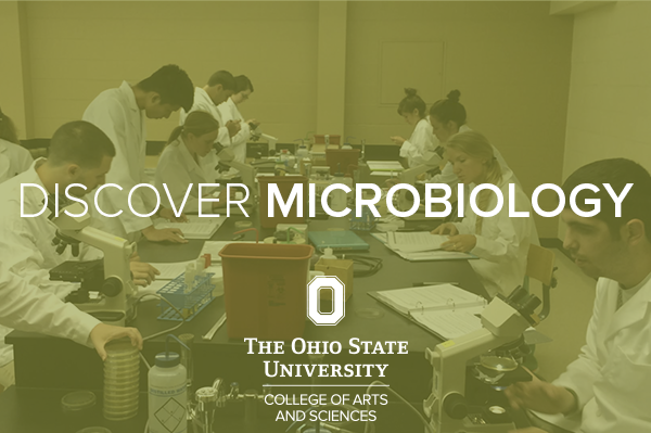 Discover Microbiology