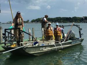 Electro-fishing - Day 2