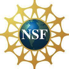 NSF logo gold
