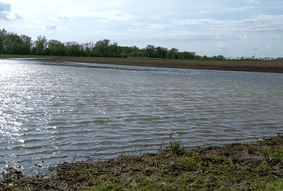Flooded Field in Champaign County Ohio in Spring 2019