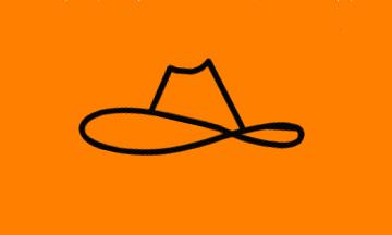 MRS_flag