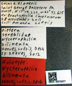 A detailed specimen label.