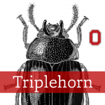 Triplehorn collection icon, genus Neomida