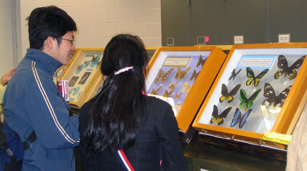 Visitors at the Triplehorn Insect Collection. 2006