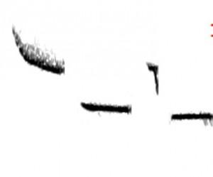 CACH-AL