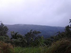 Laguna Quezon Landgrant area