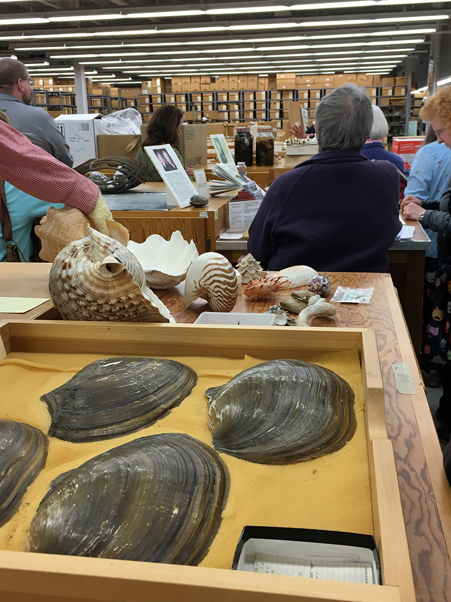 Tom Watters with visitors at the Division of Molluscs