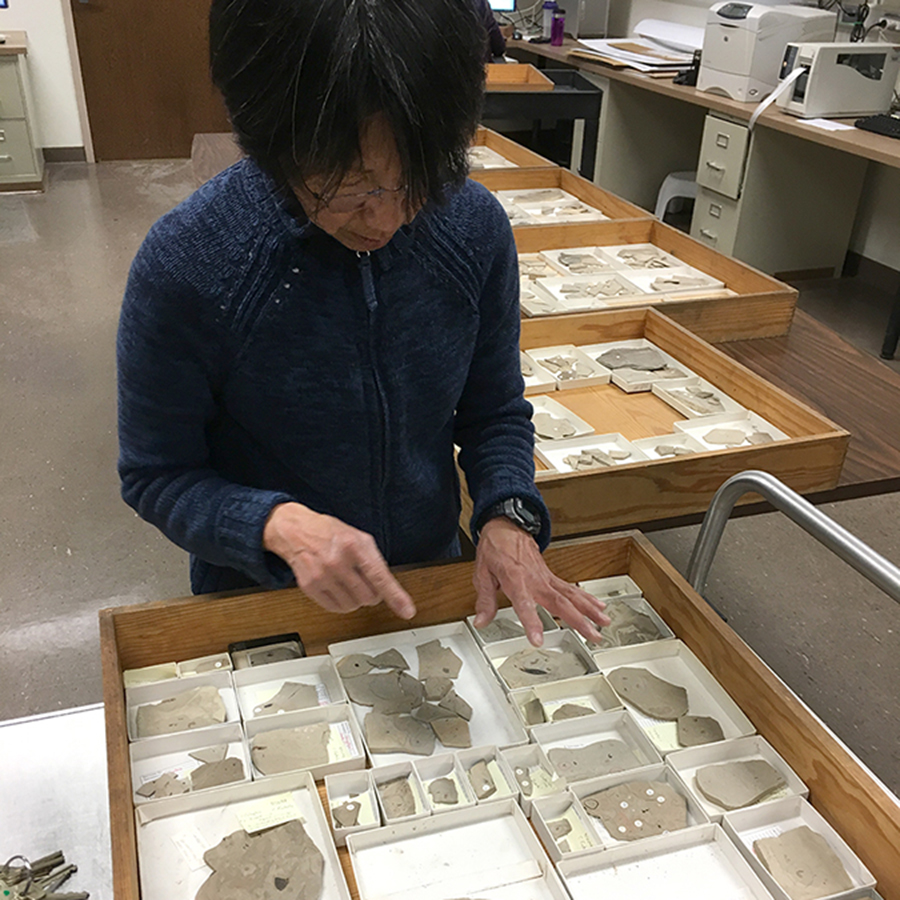 Volunteer Jan Nishimura working with fossil collection