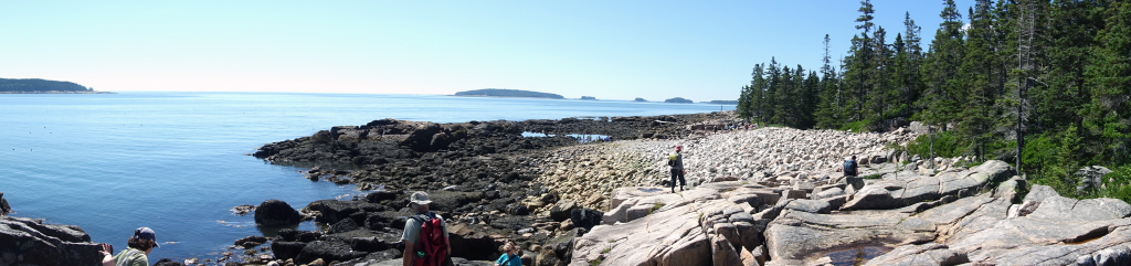 A typical rocky shoreline at low tide along the Maine coast near Eagle Hill Field Station.