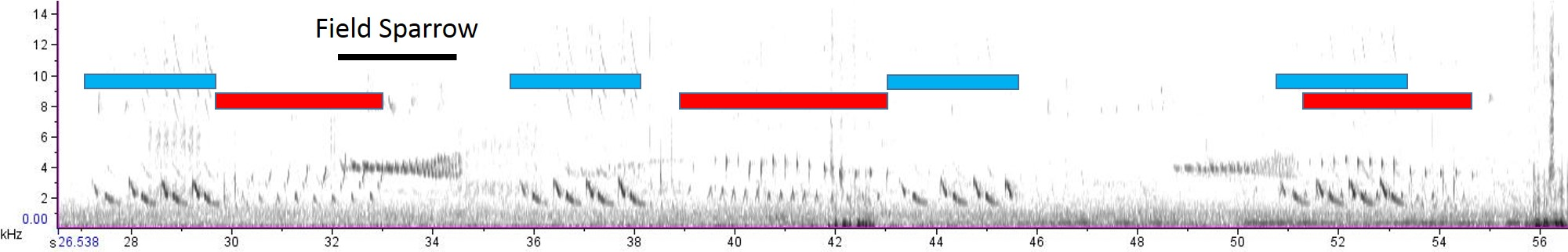 spectrogram of male and female Northern Cardinal duetting